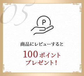 商品にレビューすると100ポイントプレゼント!